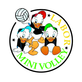 labor minivolley
